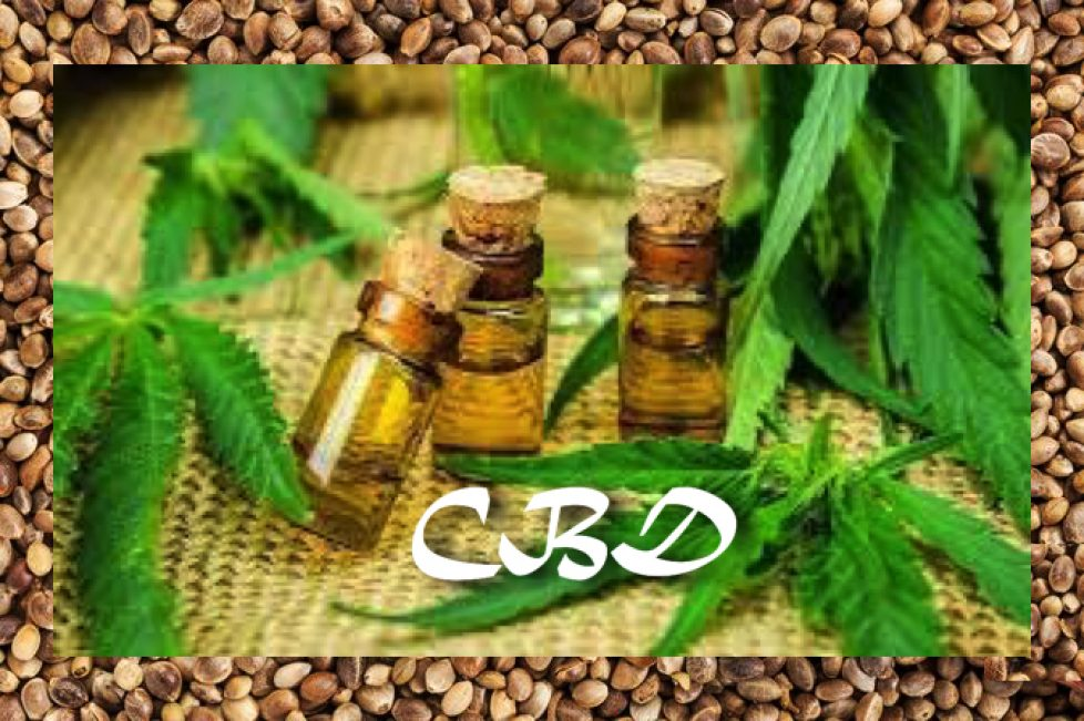 CBD Hemp Seed Oil